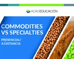 25-8-2017 Curso: Commodities Vs Specialties
